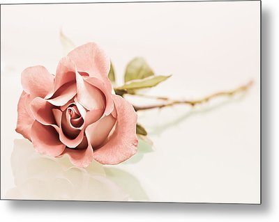 Gentle Metal Print by Elvira Pinkhas