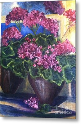 Geraniums Blooming Metal Print by Sherry Harradence