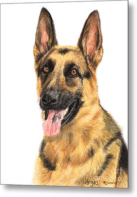 German Shepherd Painting Portrait  Metal Print by Kate Sumners