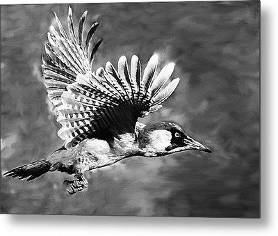 Gila Woodpecker Sedona Arizona Metal Print by Bob and Nadine Johnston