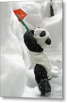 Ginny The Baby Panda In Winter #01 Metal Print by Ausra Huntington nee Paulauskaite