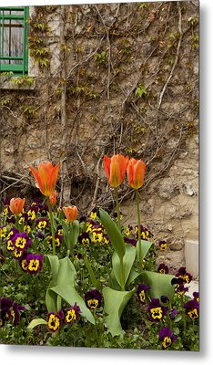 Giverny 2 Metal Print by Art Ferrier