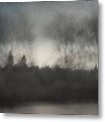 Glimpse Of The Willamette Metal Print by Carol Leigh