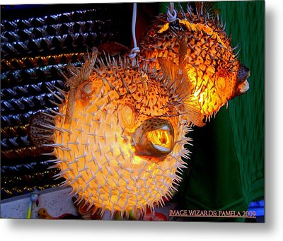 Glowing Pufferfish Metal Print by ARTography by Pamela Smale Williams