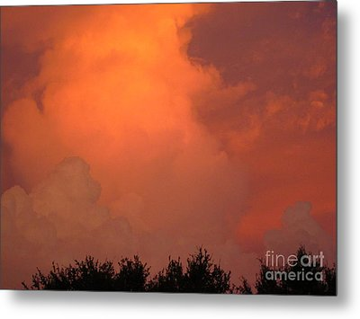 Going Out With A Boom Metal Print by Elizabeth Carr