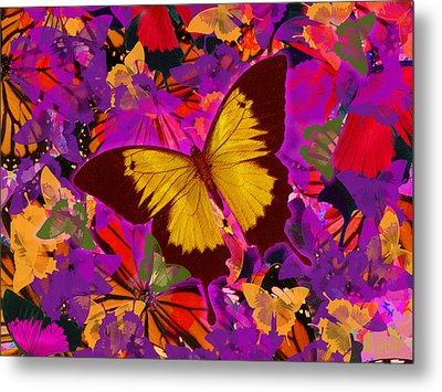 Golden Butterfly Painting Metal Print by Alixandra Mullins