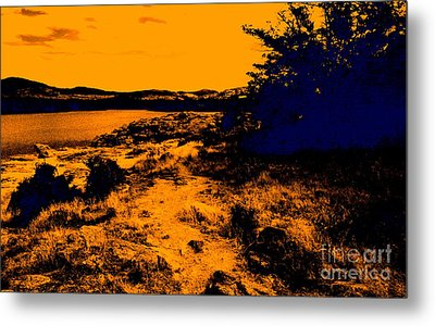 Golden Nights Metal Print by Mickey Harkins