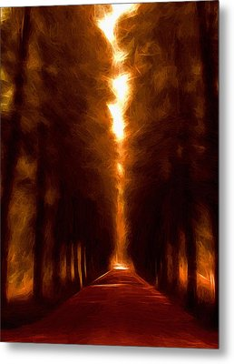 Golden October Metal Print by Stefan Kuhn