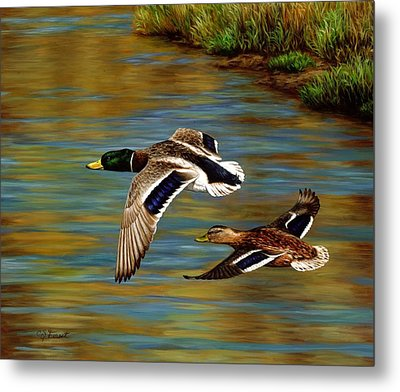 Golden Pond Metal Print by Crista Forest
