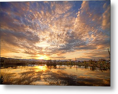 Golden Ponds Scenic Sunset Reflections 5 Metal Print by James BO  Insogna