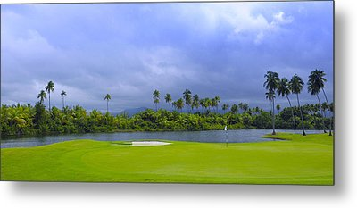 Golfer's Paradise Metal Print by Stephen Anderson