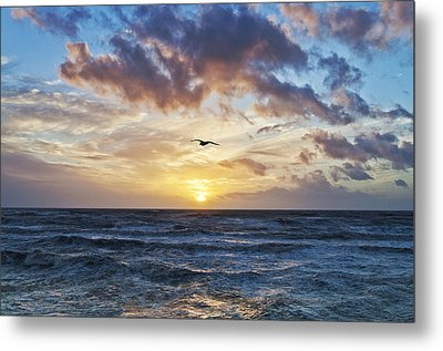 Gone With The Sun Metal Print by Nick Barkworth