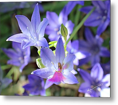 Good Morning My Fairy Metal Print by Kume Bryant
