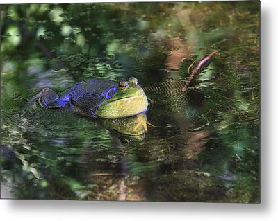 Good Vibrations Metal Print by Donna Kennedy