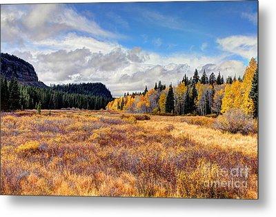 Grand Mesa Colors Metal Print by Bob Hislop