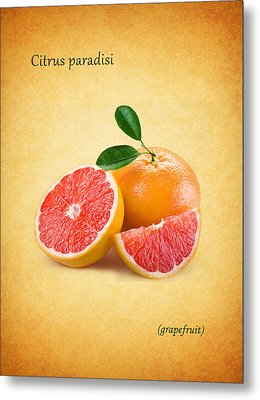 Grapefruit Metal Print by Mark Rogan