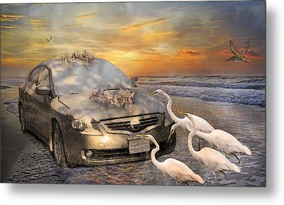 Grateful Friends Curious Egrets Metal Print by Betsy Knapp