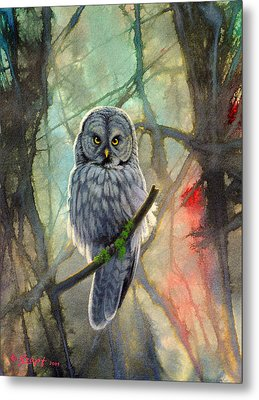 Great Grey Owl In Abstract Metal Print by Paul Krapf