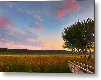 Great Meadows Late Summer Setting Metal Print by Sylvia J Zarco