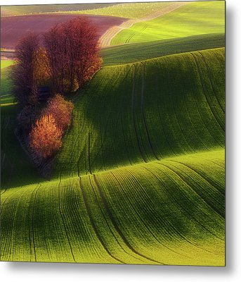 Green Fields Metal Print by Piotr Krol (bax)