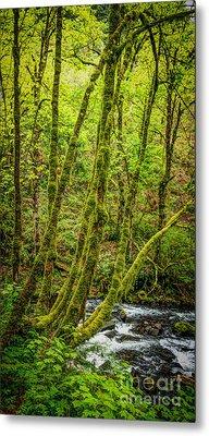 Green Green Metal Print by Jon Burch Photography
