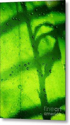 Green Leaf Through The Glass Metal Print by Lali Kacharava