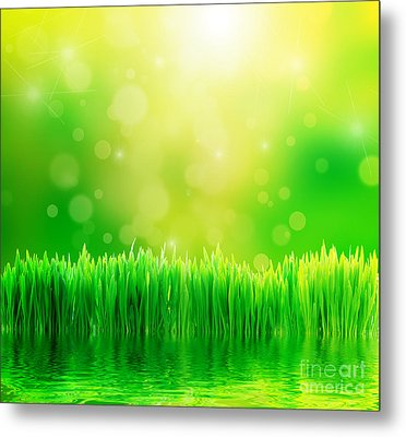 Green Nature Background With Fresh Grass Metal Print by Michal Bednarek