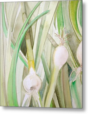 Green Onions Metal Print by Debi Starr