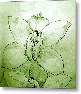 Green Orchid Metal Print by Patricia Howitt