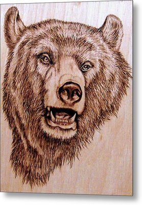 Grizzly Bear Metal Print by Danette Smith