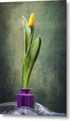 Grunge Yellow Tulip Metal Print by Erik Brede