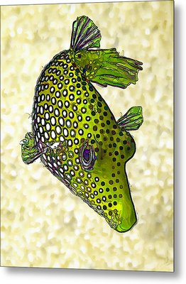 Guinea Fowl Puffer Fish In Green Metal Print by Bill Caldwell -        ABeautifulSky Photography