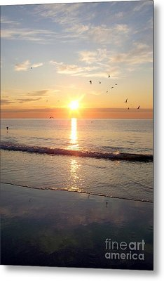 Gulls Dance In The Warmth Of The New Day Metal Print by Eunice Miller