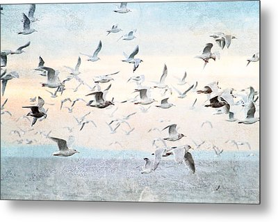 Gulls Flying Over The Ocean Metal Print by Peggy Collins