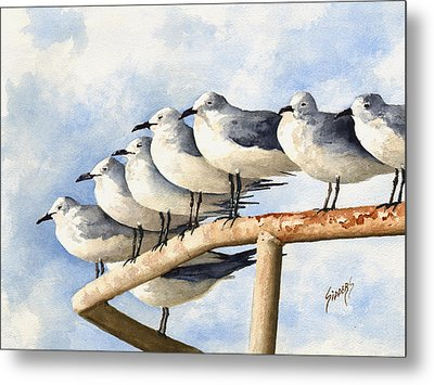 Gulls Metal Print by Sam Sidders