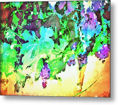 Hanging Grapes Metal Print by Cindy Edwards