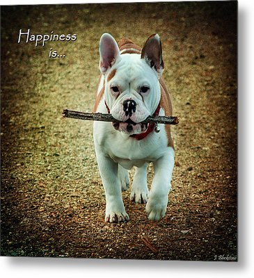 Happiness Is Metal Print by Jordan Blackstone