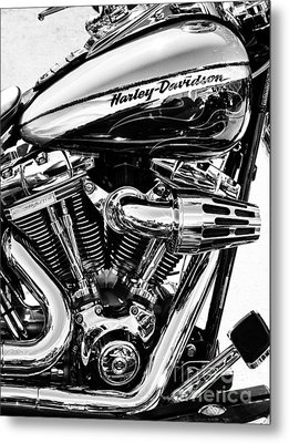 Harley Monochrome Metal Print by Tim Gainey