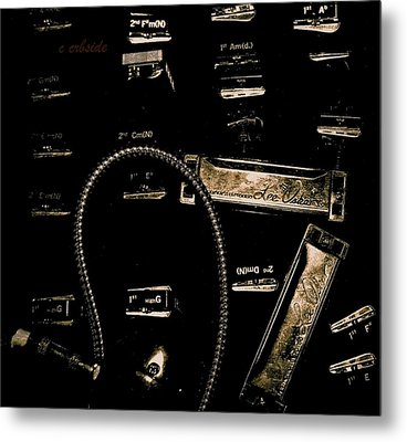 Harps In Brown Metal Print by Chris Berry
