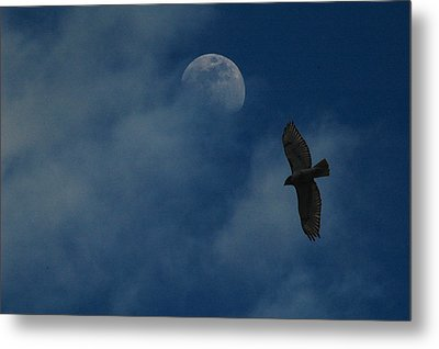 Hawk And Moon Coming Out Of The Mist Metal Print by Raymond Salani III