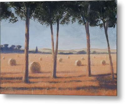 Hay Bales And Pines, Pienza, 2012 Acrylic On Canvas Metal Print by Lincoln Seligman