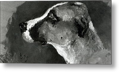 Head Of A Dog With Short Ears Metal Print by Henri de Toulouse-Lautrec
