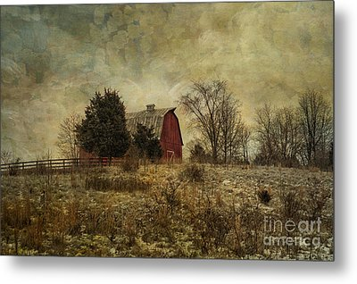 Heart Of The Farm Metal Print by Terry Rowe