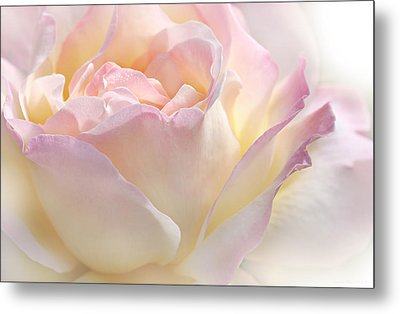 Heaven's Pink Rose Flower Metal Print by Jennie Marie Schell