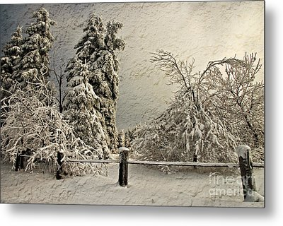 Heavy Laden Blizzard Metal Print by Lois Bryan