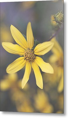 Hello Yellow Metal Print by Faith Simbeck