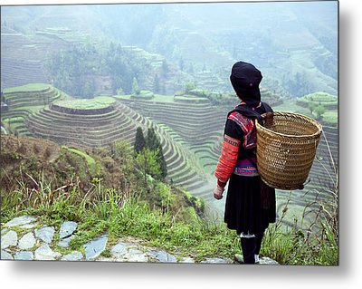 Her Rice Terraces Metal Print by King Wu