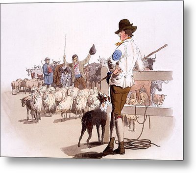 Herdsmen Of Sheep And Cattle, From The Metal Print by William Henry Pyne