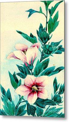 Hibiscus Flowers 1870 Metal Print by Padre Art