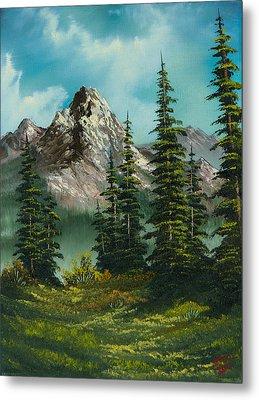 High Meadow Metal Print by C Steele